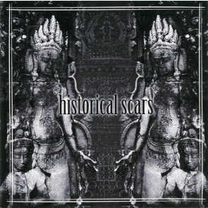 dizSolid - historical scars